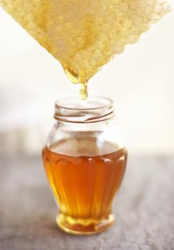 Honey Nature's Energy Food
